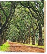 The Deep South Wood Print