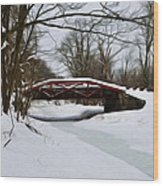 The Delaware Canal At Washington's Crossing Wood Print by Bill Cannon