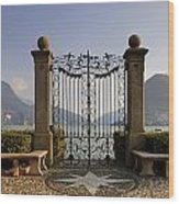 The Gateway To Lago Di Lugano Wood Print