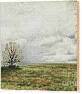 The Lone Tree Wood Print