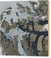 The Queen Elizabeth Islands Wood Print