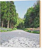 The Road Wood Print by Jenny Senra Pampin