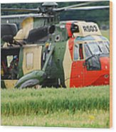 The Sea King Helicopter Of The Belgian Wood Print by Luc De Jaeger