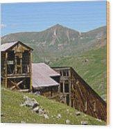 The Sound Democrat Mill Wood Print
