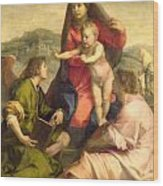 The Virgin And Child With A Saint And An Angel Wood Print by Andrea del Sarto