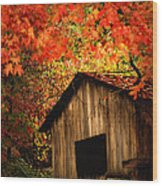 The Wood Shed  Wood Print
