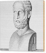 Theophrastus Wood Print