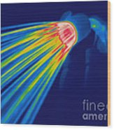 Thermogram Of A Shower Head Wood Print by Ted Kinsman