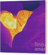 Thermogram Of A Sleeping Girl Wood Print