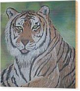 Tiger Wood Print by Shadrach Ensor