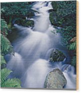 Time Lapse Of Taggerty River Flow Wood Print