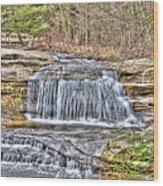 Top Of The Upper Falls Wood Print