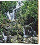 Torc Waterfall, Killarney National Wood Print