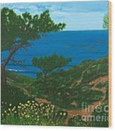 Torrey Pines Trails Wood Print