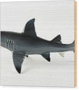 Toy Shark Wood Print