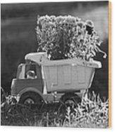 Toy Truck Planter Wood Print