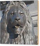 Trafalgar Square Lion Wood Print