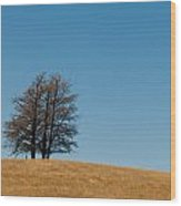 Tree Formation On A Hill Wood Print