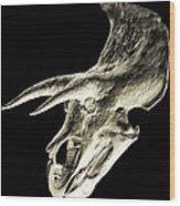Triceratops Dinosaur Skull Wood Print