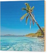 Tropical Beach Malcapuya Wood Print