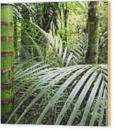 Tropical Jungle Wood Print