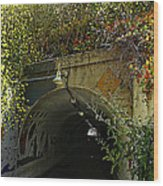 Tunnel At Crystal Cove Wood Print