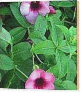 Twin Wild Flowers Wood Print