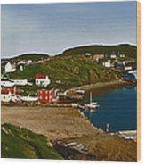 Two Good Arms Newfoundland Wood Print