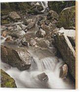 Unnamed Waterfall Along South Tongass Wood Print