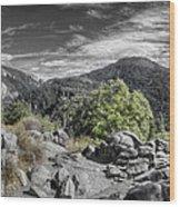 Upper View Wood Print