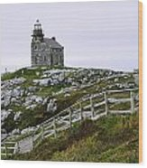 View Of Lighthouse, Rose Blanche Wood Print