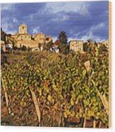 Vineyards Wood Print by Jeremy Woodhouse
