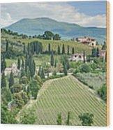 Vineyards On A Hillside Wood Print