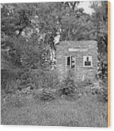 Walnut Grove School Ruins Wood Print