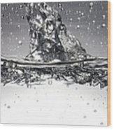 Water, High-speed Photograph Wood Print