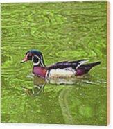 Water Wood Duck Wood Print