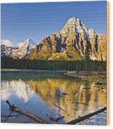 Waterfowl Lakes And Mount Chephren Wood Print