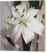 White Lily In Macro Wood Print