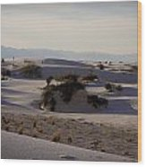 White Sands 1 Wood Print