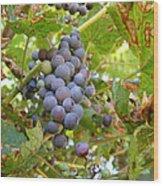Wild Grapes Wood Print