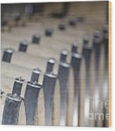 Wine Barrels In Line Wood Print