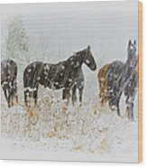 Winter Horses Wood Print