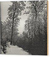 Winter Mood Wood Print