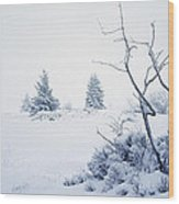 Winter On The Moor Wood Print