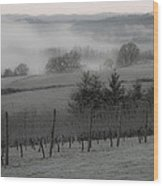 Winter Vineyard Wood Print by Jean Noren