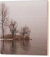 Wintertrees Wood Print