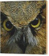 Wise Old Owl Wood Print