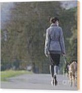 Woman Walking With Her Dogs Wood Print