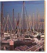 Yacht Marina Wood Print