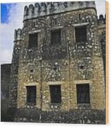Zanzibar Old Fort Wood Print by Darcy Michaelchuk